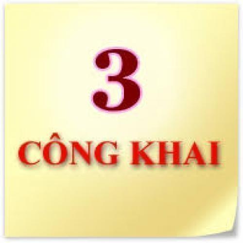 Quyết định về việc công khai dự toán thu, chi ngân sách năm 2011 trường Tiểu học Trần Phú